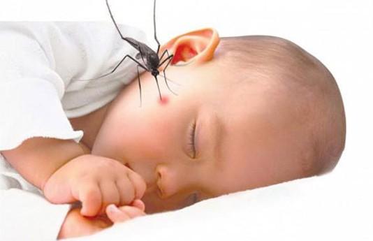 Triệu chứng bệnh sốt xuất huyết ở trẻ nhỏ và cách chăm sóc