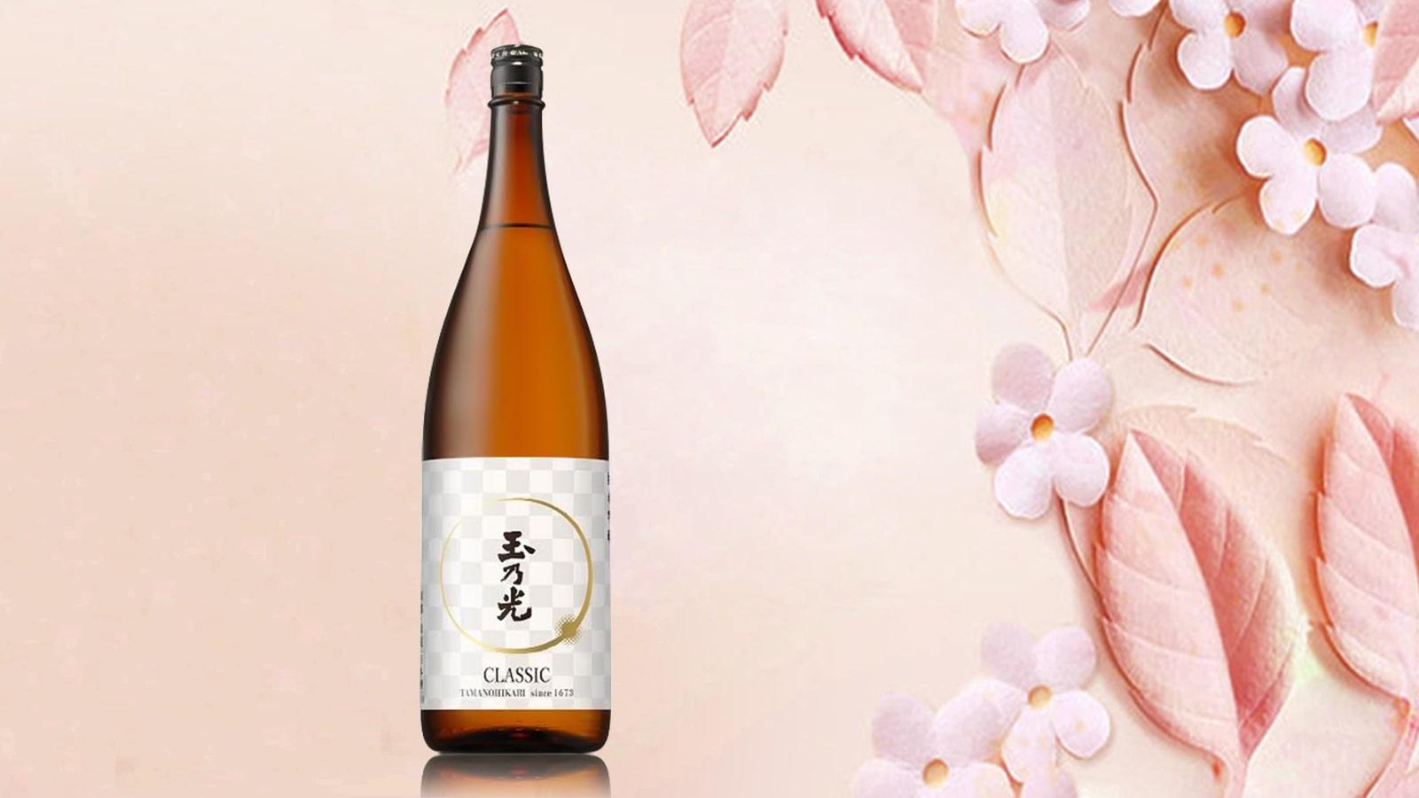 Rượu sake Nhật Bản mua ở đâu giá rẻ và chất lượng